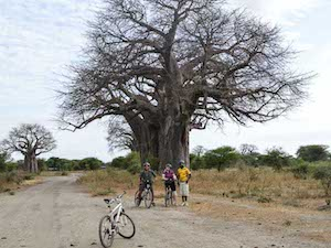 Cycle kili2coast tanzania charity
